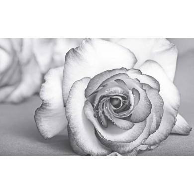 Декор 60х100 Виола роза  6 части