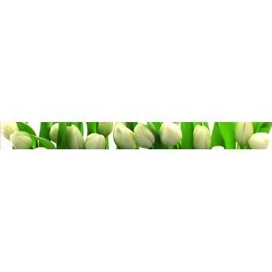 Фриз LN060x600-1-DIGITAL TU
