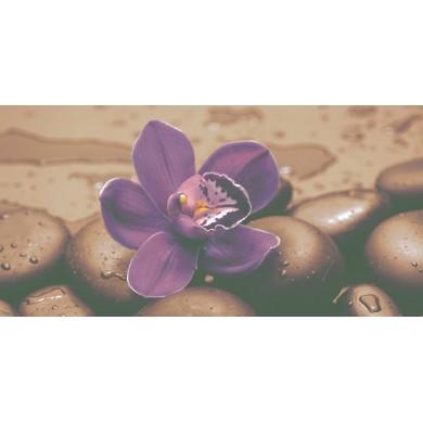Декор 25x50 Неос мат тъмна Орхидея